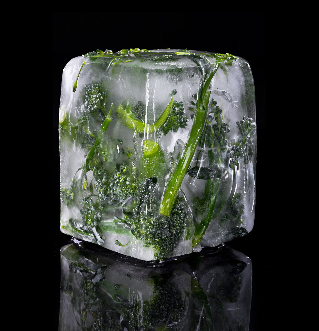 Ice_Cube_Broccolini